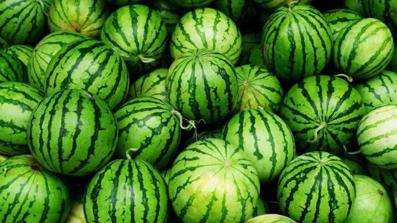 Кавунова дієта для схуднення: найсмачніша літня дієта