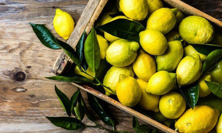 Схуднути до Нового року: як швидко схуднути до НГ – лимонна дієта