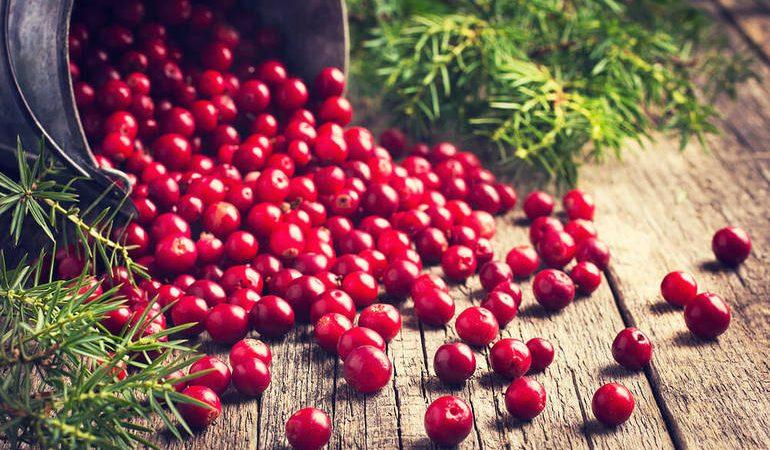 Сниться журавлина: бачити кущі і збирати великі стиглі ягоди, до чого сняться плоди по соннику
