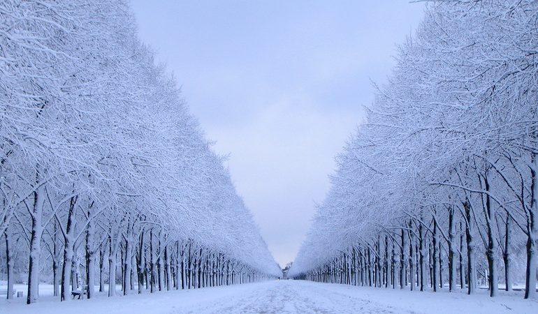 Сон, де сниться сніжна зима: значення сну влітку і восени, тлумачення за сонниками Міллера і Ванги