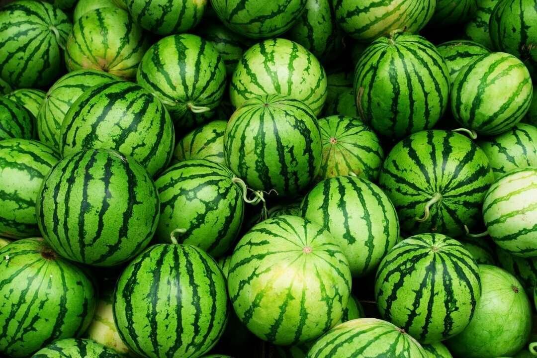 Арбузная диета для похудения: самая вкусная летняя диета