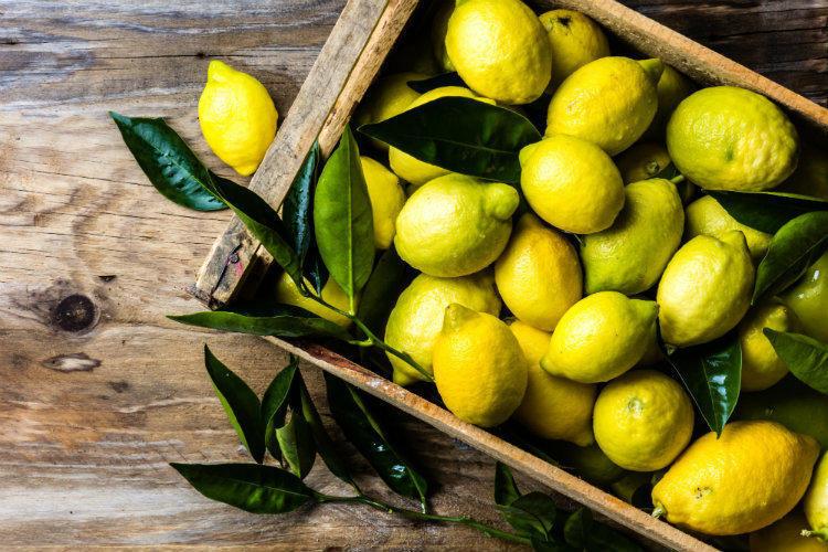 Похудеть к Новому году: как быстро похудеть к НГ – лимонная диета