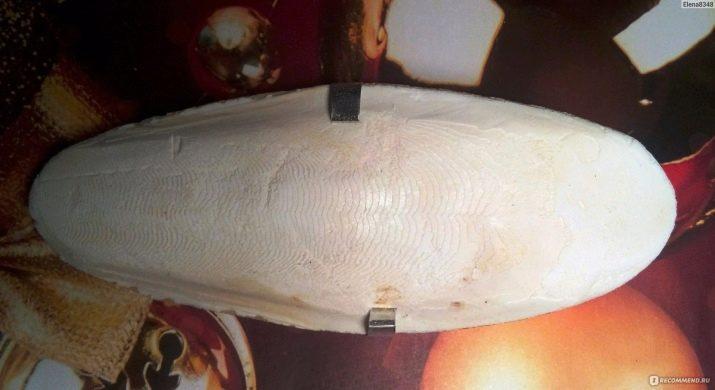 Кальцій для равликів (26 фото): крейда і кальцесмесь для ахатин. Що ще давати ахатинам? Як приготувати суміш в домашніх умовах?