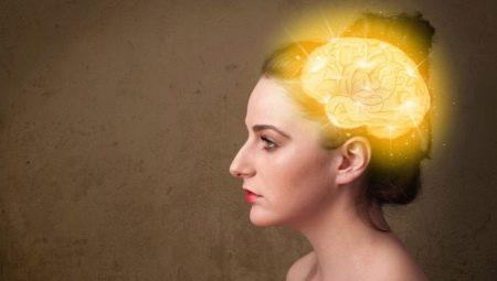 Семантична пам'ять: що це таке в психології. Теорія смислової пам'яті. Як розвинути тип пам'яті?