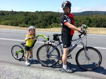 Велопричіп для дітей: дитячий причіп-коляска для велосипеда, велосипедний причіп Thule для перевезення дітей та інші моделі