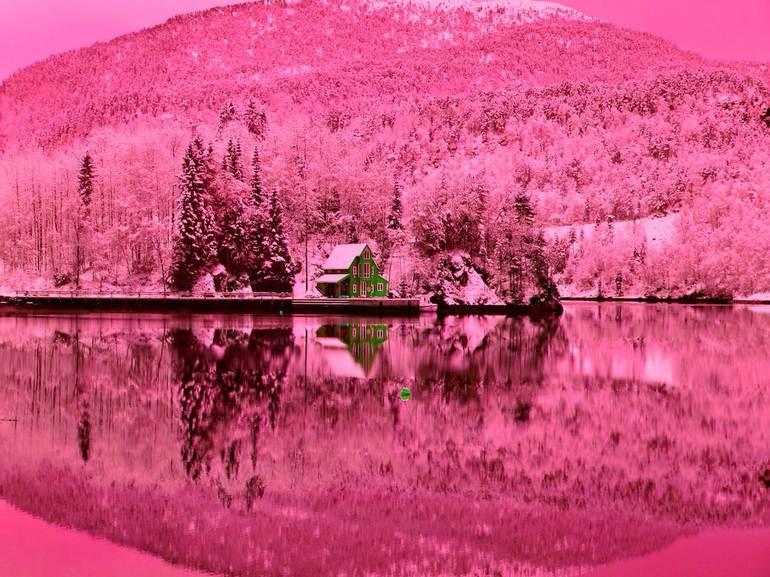 Сон, де сниться рожевий колір: тлумачення сонників, значення одягу і букета в сновидінні